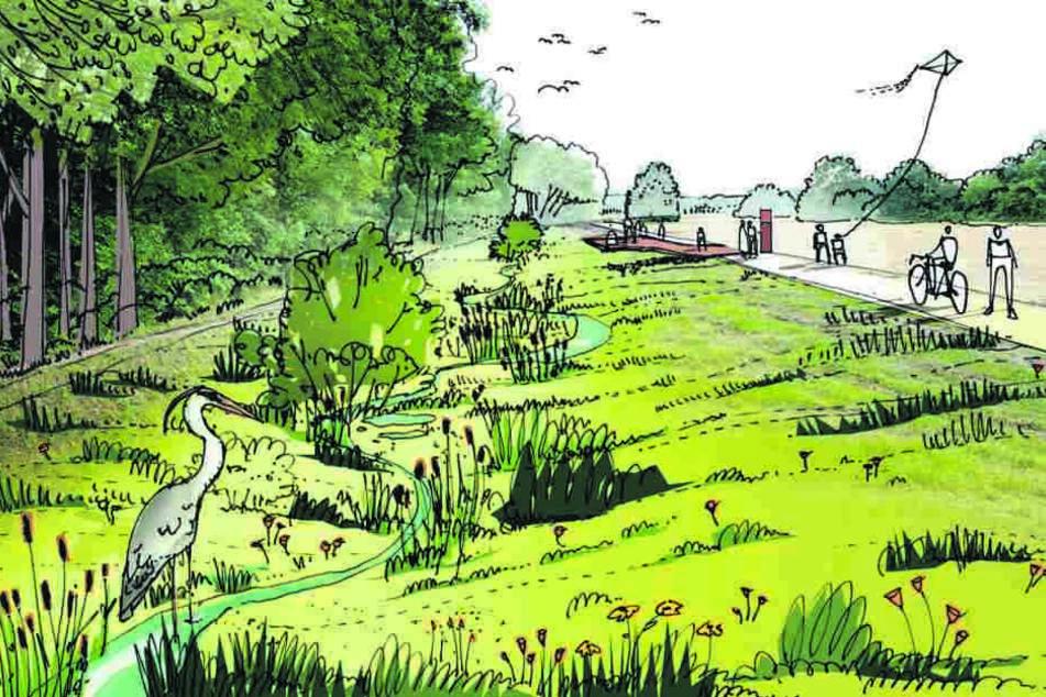 Mit naturnahem Flussbett, Bäumen am Ufer und Reihern auf Fischjagd: So schön könnte das Areal nahe Toeplerpark in einigen Jahren aussehen.