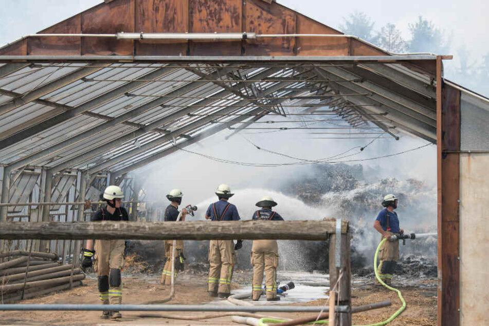 Feuerwehrleute löschen die brennende Pferdeställe in Lübars.