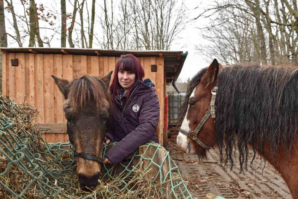"""Anne H. (30) kümmert sich auf dem Ponyhof """"Happy Horse"""" liebevoll um die Vierbeiner."""