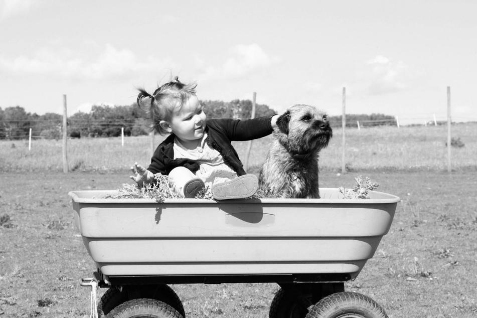 Wenn Hunde und Kinder einander respektieren, können die besten Freundschaften daraus entstehen.