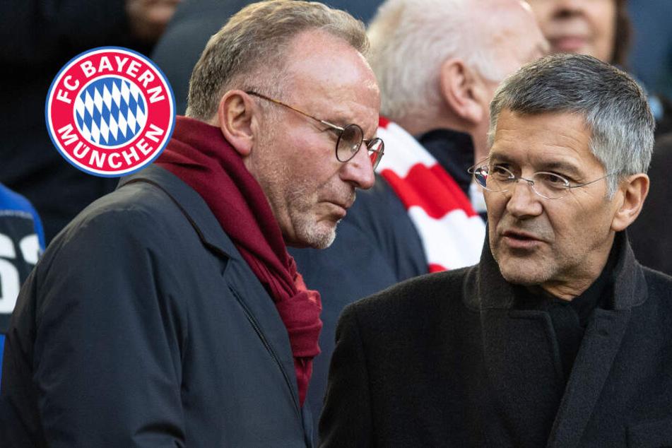 FC Bayern Trainerfrage: Entscheidung noch in diesem Jahr!