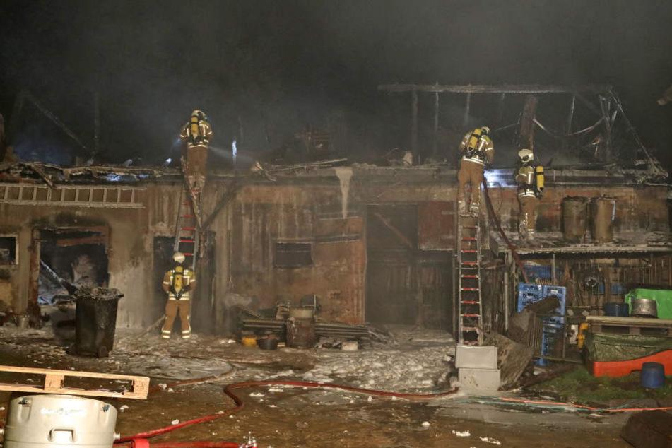 Das Gebäude, das als Stall genutzt wird, brannte komplett aus.