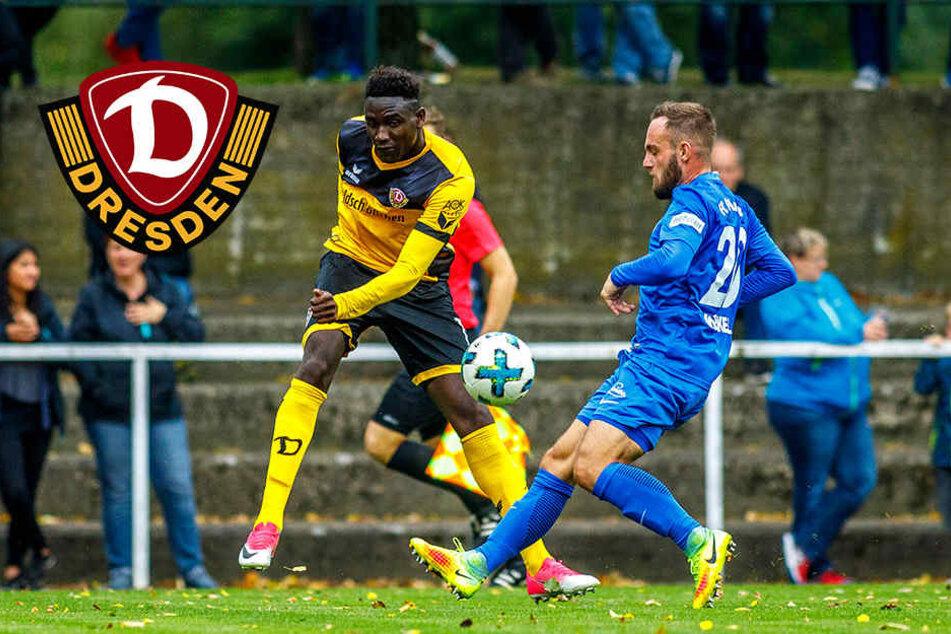 Selbstvertrauen getankt: Dynamo siegt im Test gegen Neugersdorf