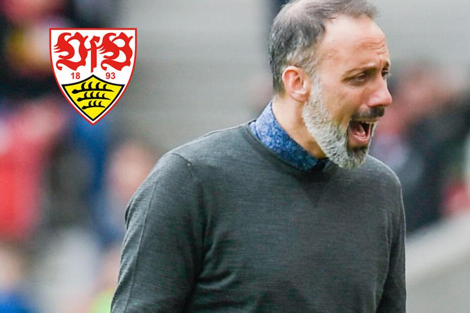 Coacht Matarazzo den VfB Stuttgart zurück in die Bundesliga?