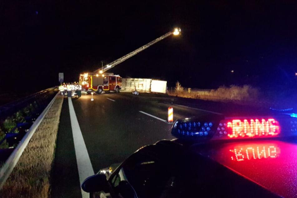 Rinder auf der Autobahn! A38 bei Leipzig nach schwerem Unfall gesperrt