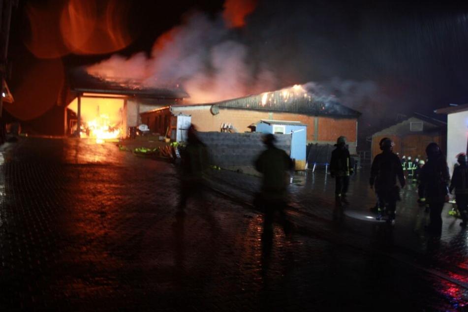 Flammeninferno auf Reiterhof: Feuerwehr rettet dutzende Pferde vor dem Tod