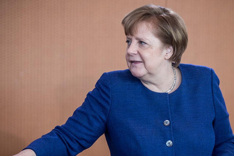 Kein gutes Zeugnis bekommt Angela Merkel (64) aus der Alternative für Deutschland ausgestellt.