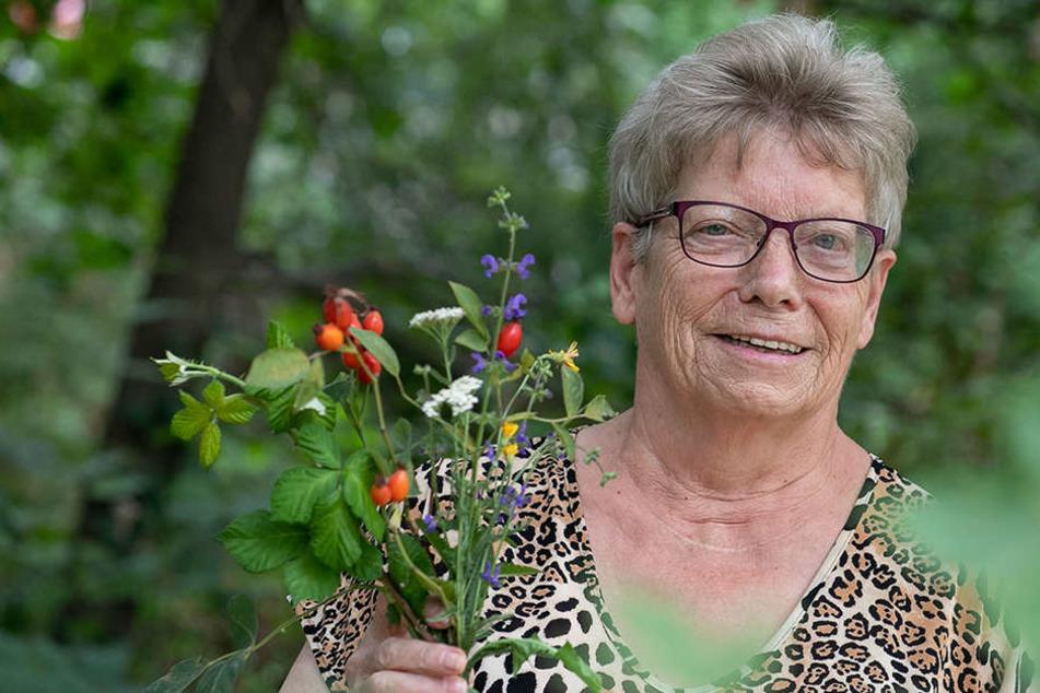 Gesundheit beginnt vor der Tür: Kräuter-Wanderung auf die Kaitzer Höhe
