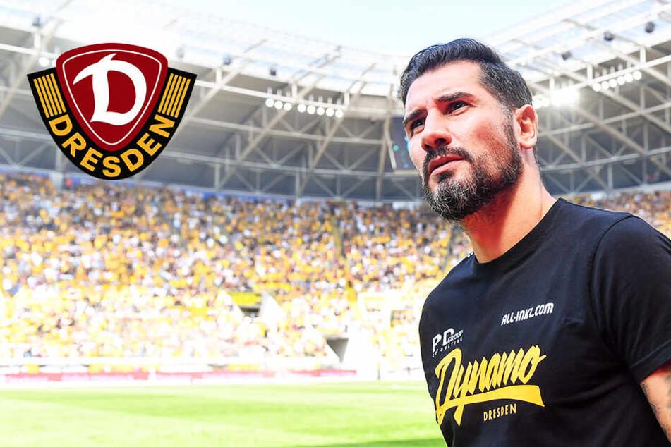 3:3 nach 0:3: Dynamo-Coach Fiel bedankt sich beim lieben Gott!