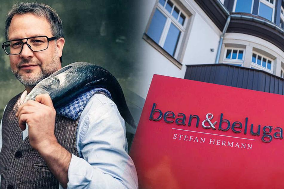 """Sterne-Koch Hermann schließt """"bean & beluga"""" auf dem Weißen Hirsch"""