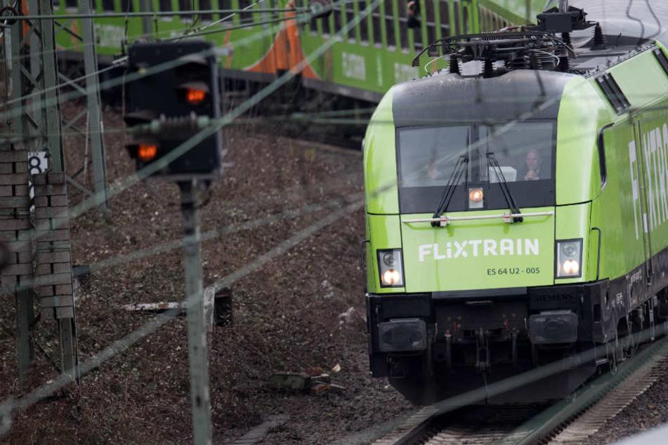 """Der """"Flixtrain"""" fährt in den Hamburger Hauptbahnhof ein."""