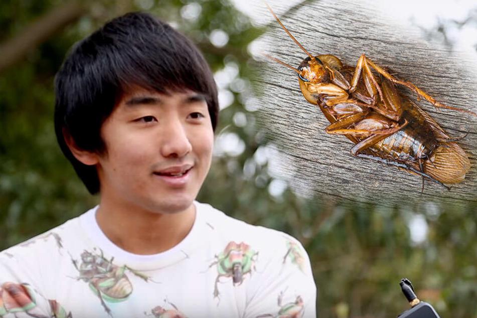 Mann führte ein Jahr lang eine Beziehung mit einer Kakerlake