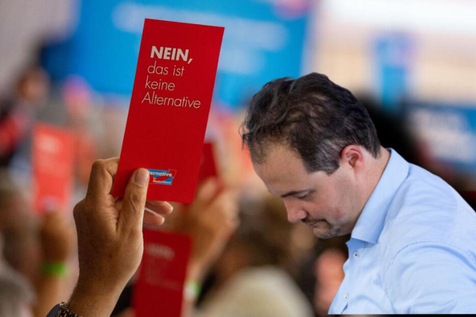 Schon wieder Parteitag: Zerfleischt sich die bayerische AfD nun selbst?