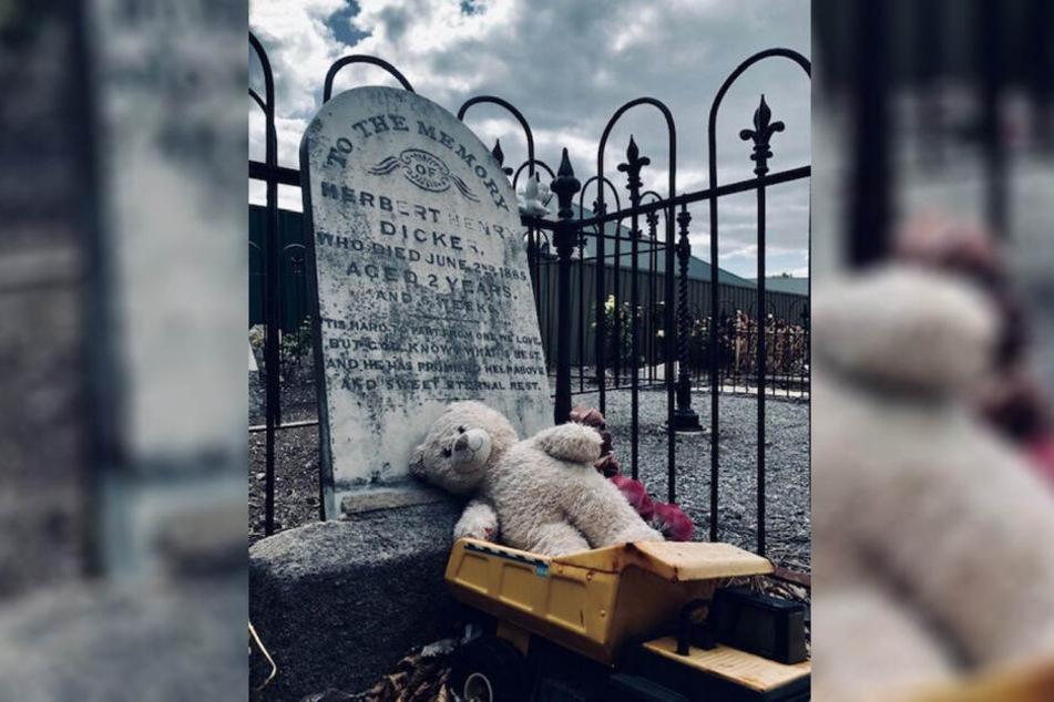 Immer wieder fand David Spielzeug am Grab des Jungen.