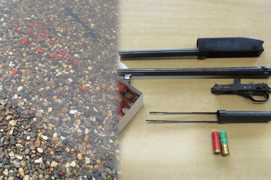 Dresden: Nach Munitionsfund in der Elbe: Polizei sucht Waffenbesitzer
