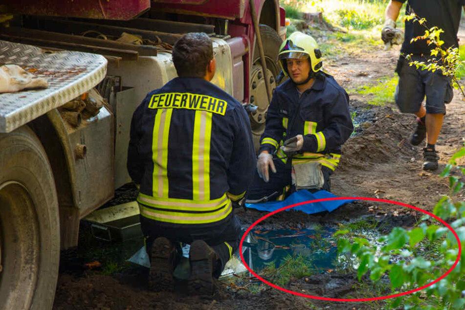 Hier verseuchen Hunderte Liter Diesel den Waldboden
