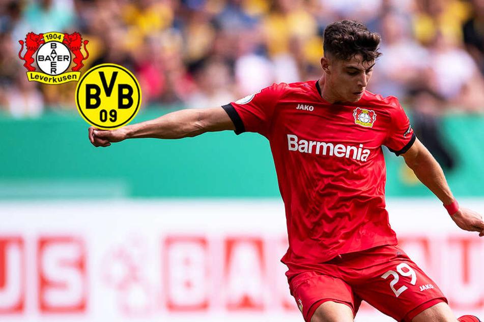 Gerücht vorm direkten Duell: Kai Havertz von Leverkusen zum BVB?