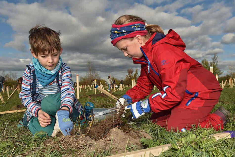 Brachten Setzlinge in die Erde: Florin (8) und Ella (7) von der 15. Grundschule halfen mit, Dresden grüner zu machen.