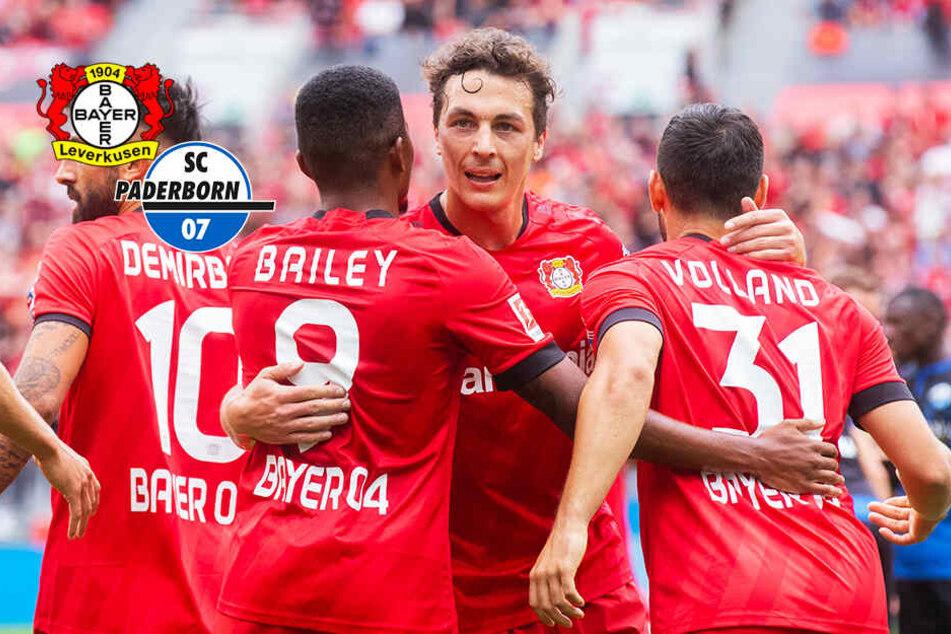 Großer Kampf und Offensiv-Spektakel! Doch SCP unterliegt Leverkusen knapp
