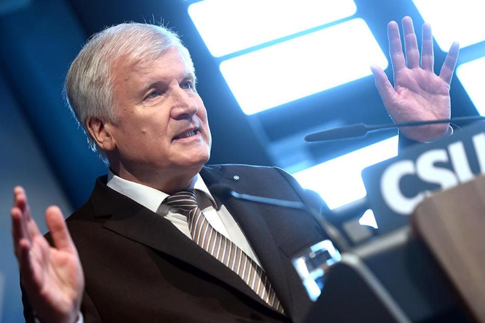 Der designierte Bundesinnenminister Horst Seehofer.
