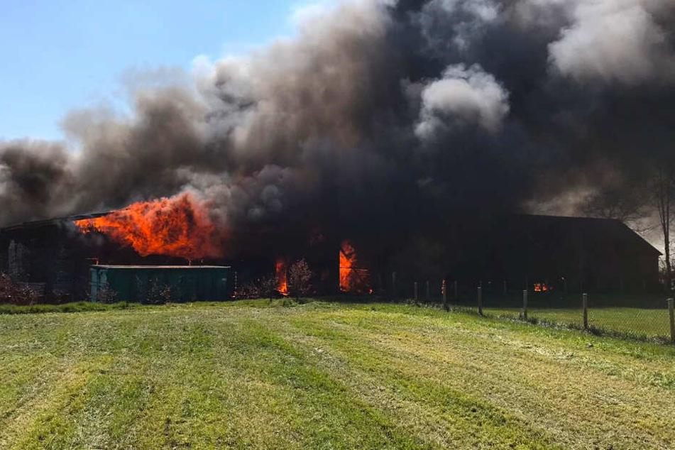 So heftig brennt es am Dienstag im Anbau einer Tischlerei in Varel bei Wilhelmshaven.