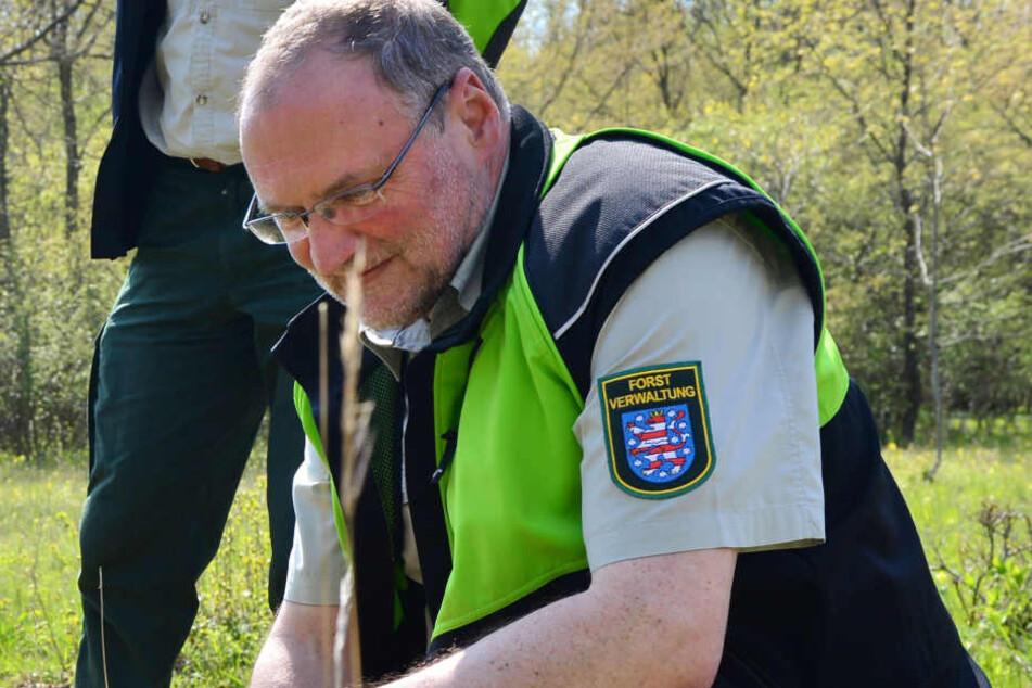 Thüringenforst-Vorstand Volker Gebhardt wünscht sich eine optimierte Forstwirtschaft.