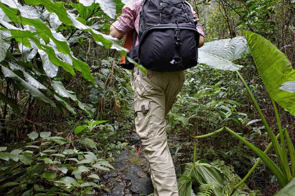 Werner Doblies hatte großes Glück. Im Dschungel lauern viele Gefahren. (Symbolbild)