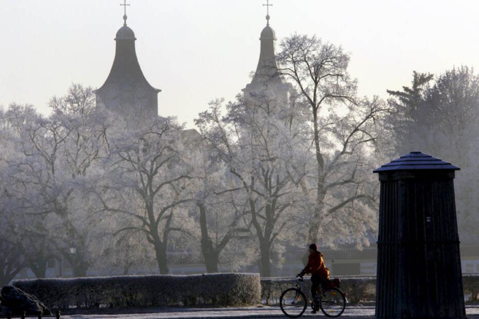 Spaziergänge in München: Die schönsten Routen!