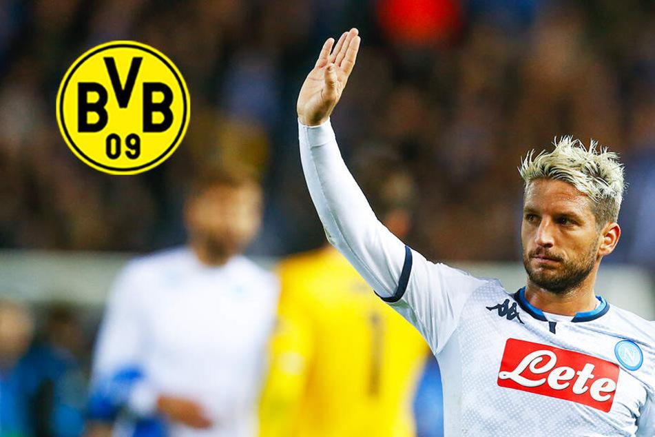BVB vor Transferkracher? Kommt belgischer Dribbelzwerg nach Dortmund?