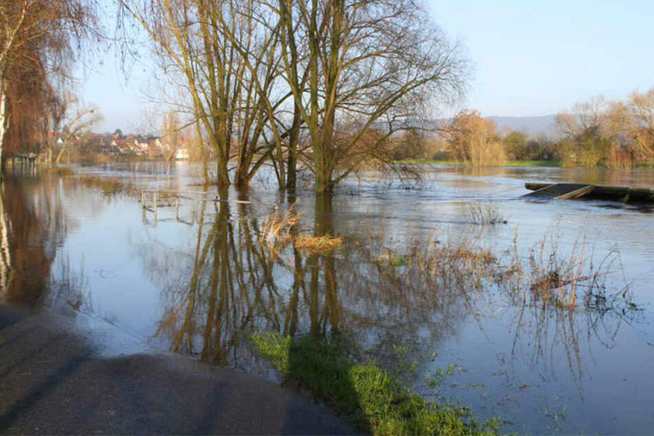 Die Ufer wurden vom steigenden Pegel der Weser in Rehme überflutet.