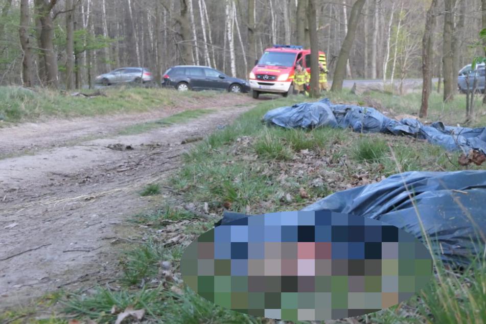 Am Hengstberg in Grimma wurden am Donnerstag 30 Säcke mit Tierkadavern entdeckt.