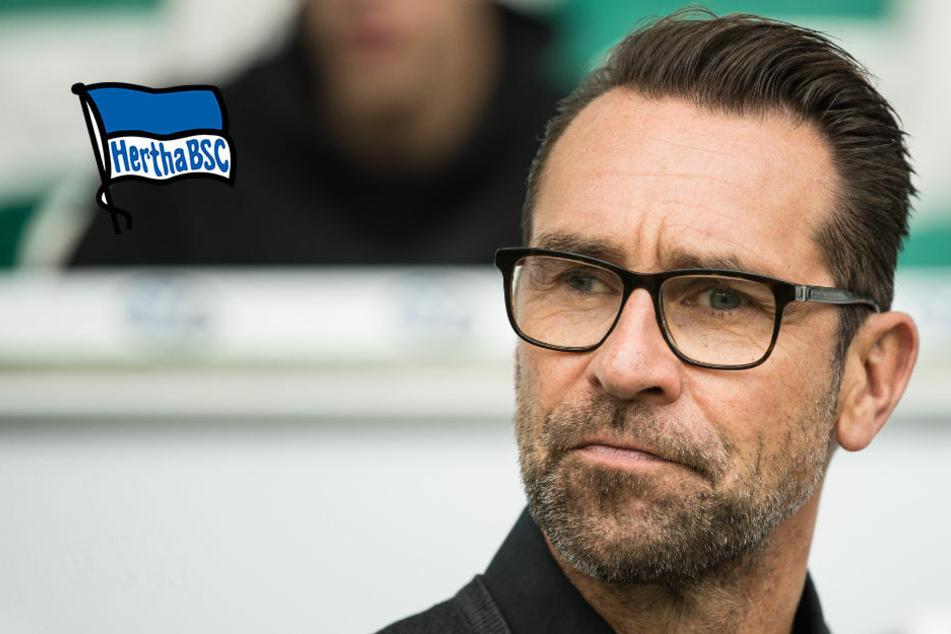 Hertha BSC mit Sturmproblemen? Michael Preetz sucht dringend Verstärkung!