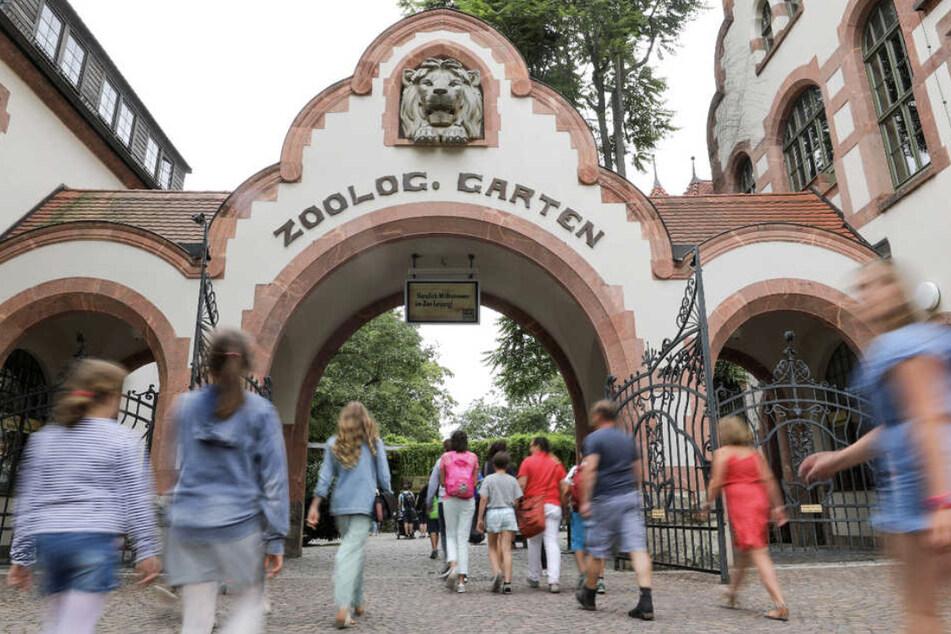 Ab dem 15. März darf der Leipziger Zoo wieder seine Pforten öffnen.