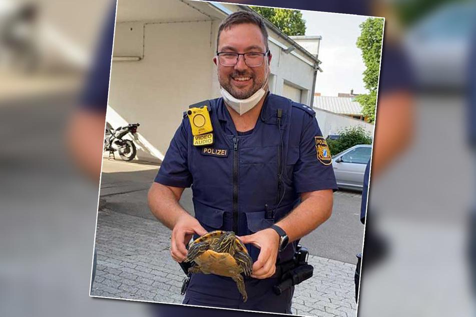 Fluchtversuch zwecklos: Das vermutlich ausgebüxte Tier konnte von den Polizeibeamten in Sicherheit gebracht werden.
