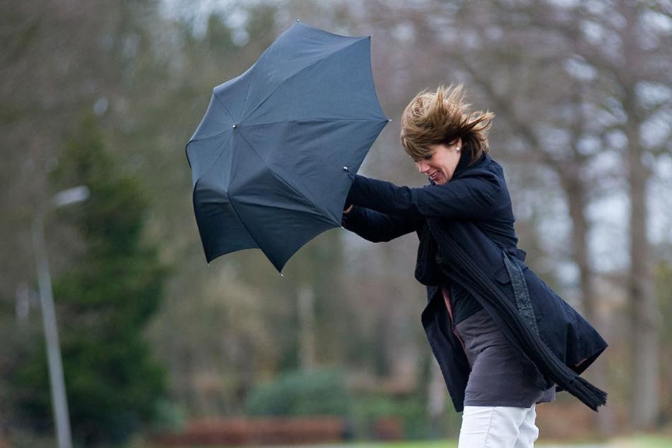 Vor allem am Neujahrstag wird es in weiten Teilen des Landes sehr stürmisch.