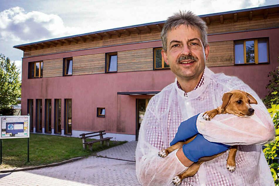 Wuff! Leipziger Tierheim startet im September Radio für Hunde