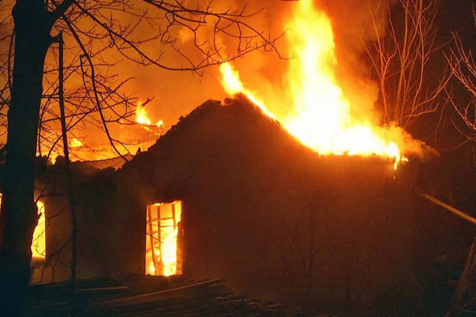 Die Laube stand schon lichterloh in Flammen, als die Einsatzkräfte der Feuerwehr eintrafen.