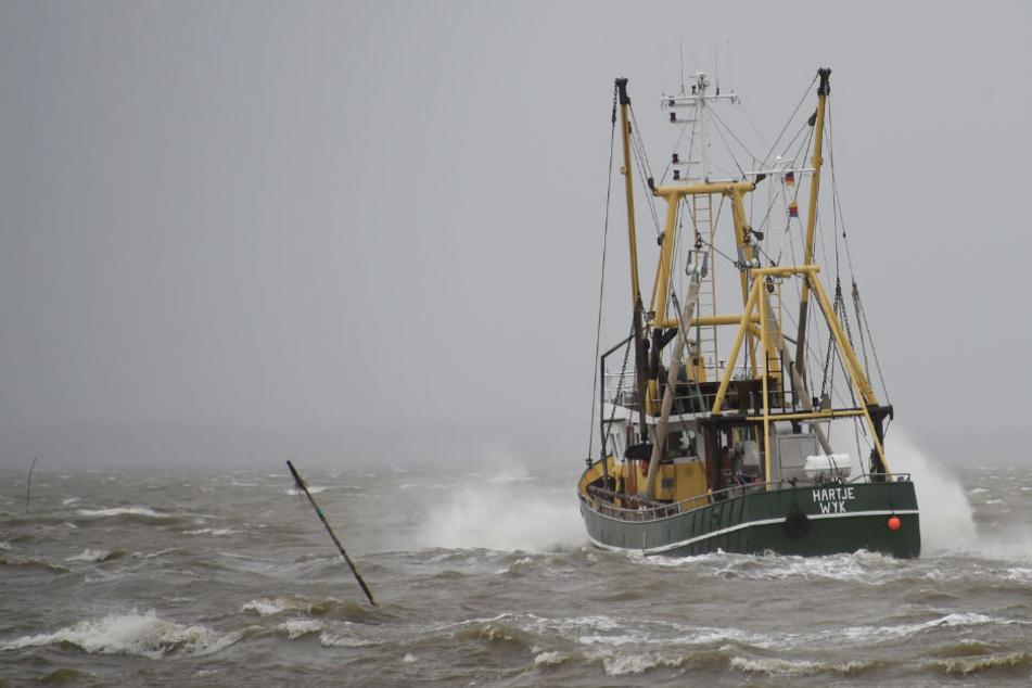 Ein Fischkutter fährt bei Wellengang auf der Nordsee. (Symbolbild)