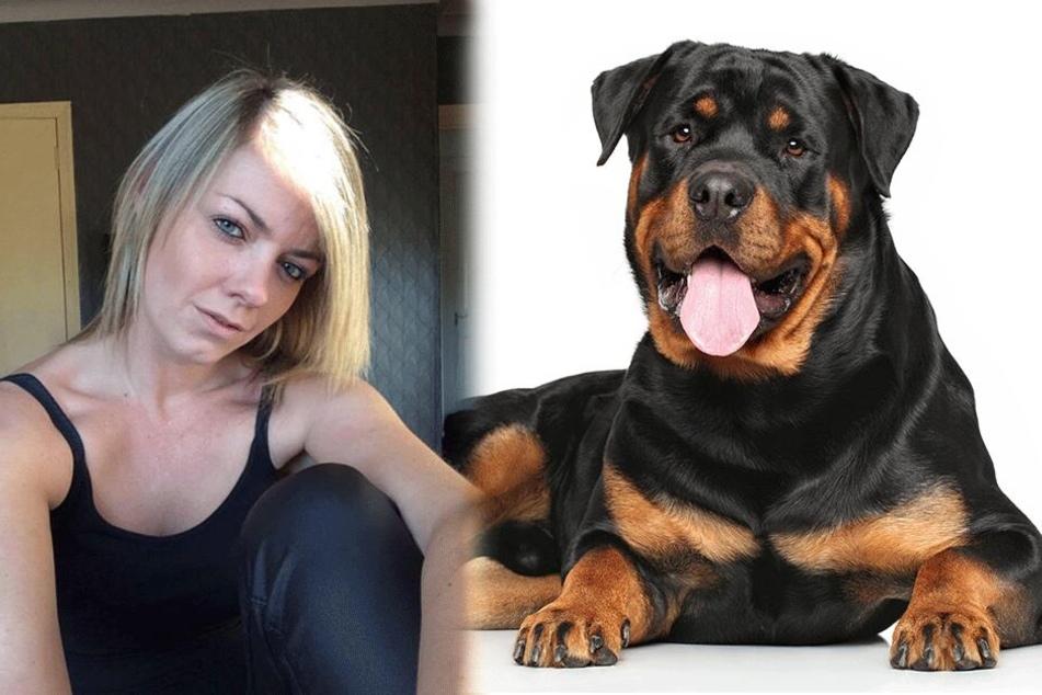 Nach Streit: Mann tötet den Hund seiner Schwester auf bestialische Art und Weise