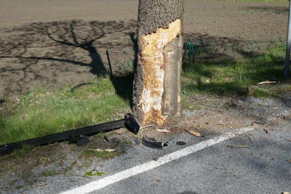 Die Kia-Fahrerin war gegen diesen Baum gefahren.