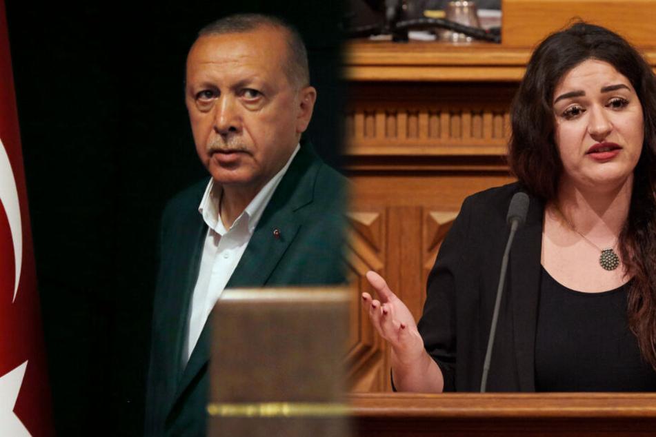 Linken-Politikerin warnt vor Erdogans Macht in Deutschland