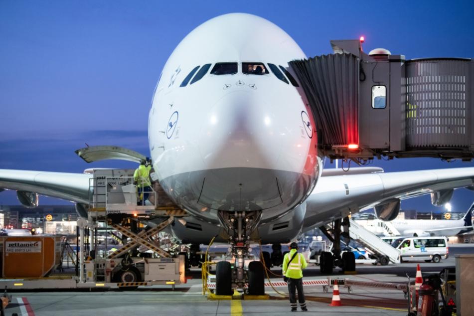 Ein Airbus A380 der Lufthansa steht am Flughafen Frankfurt am Main in seiner Parkposition.