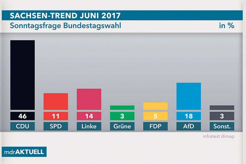 Drei Monate vor der Bundestagswahl zeigt die Umfrage, wie die politische  Stimmung im Land ist. Die Skandale haben der AfD offenbar nicht geschadet.