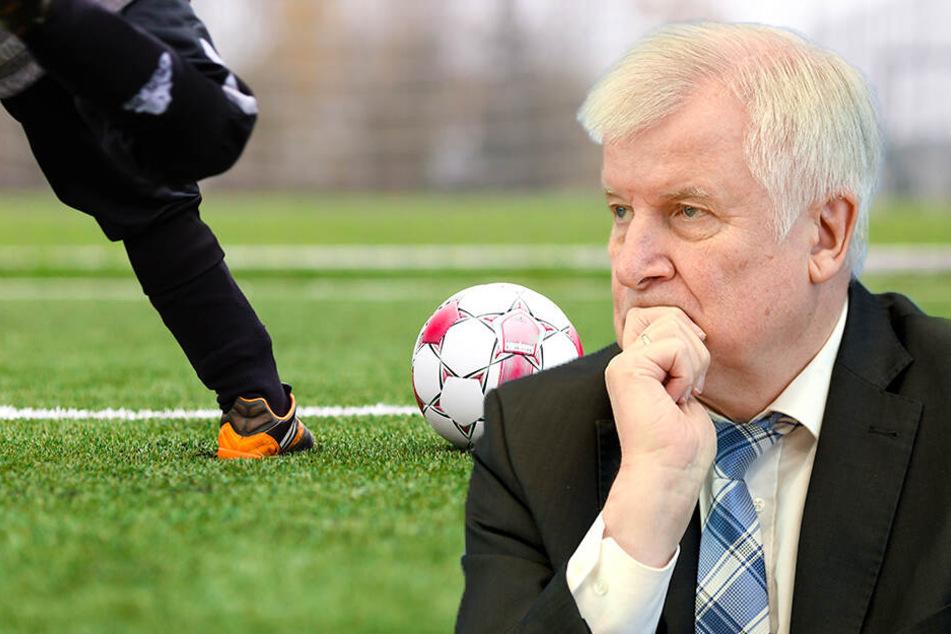 Kunstrasenverbot bedroht Existenz Tausender Amateur-Vereine im Fußball