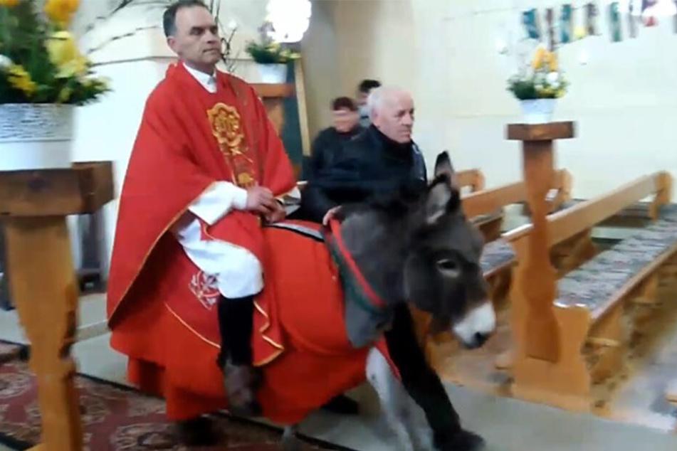 Priester reitet Esel - zu viel für die Tierschützer.