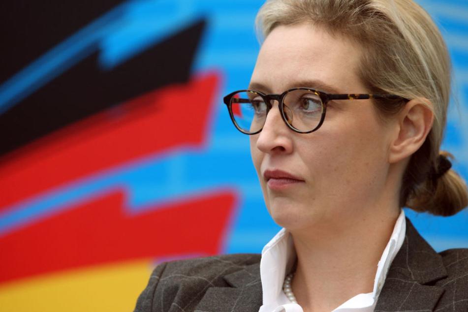 Die Staatsanwaltschaft ermittelt nun offiziell gegen Alice Weidel wegen des Verdachts eines Verstoßes gegen das Parteigesetz.