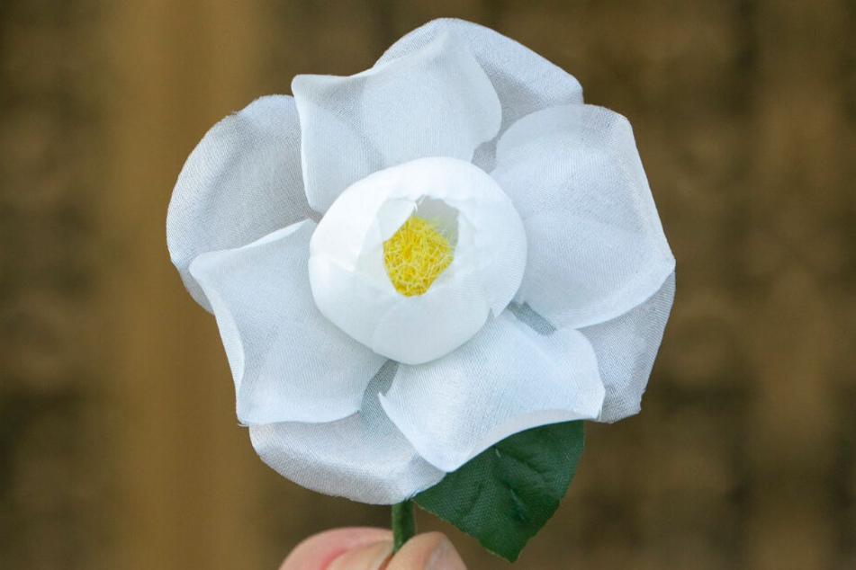 Die weiße Rose ist ein Zeichen für die Überwindung von Krieg, Rassismus und Gewalt, dient auch als Symbol gegen die krude ideologische Verzerrungen des Gedenktages.