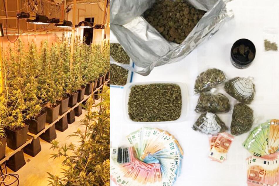 Kiloweise Gras und über 10.000 Euro gefunden: Dealer sofort im Gefängnis!