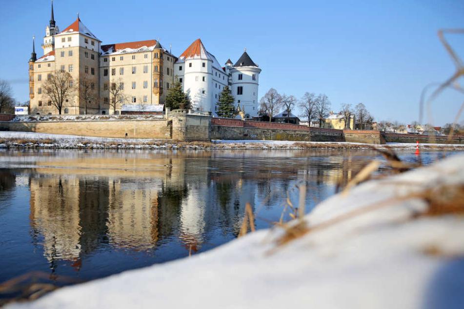 Im Schloss Hartenfels wird am Montag um rückkehrwillige Fachkräfte geworben. (Archivbild)