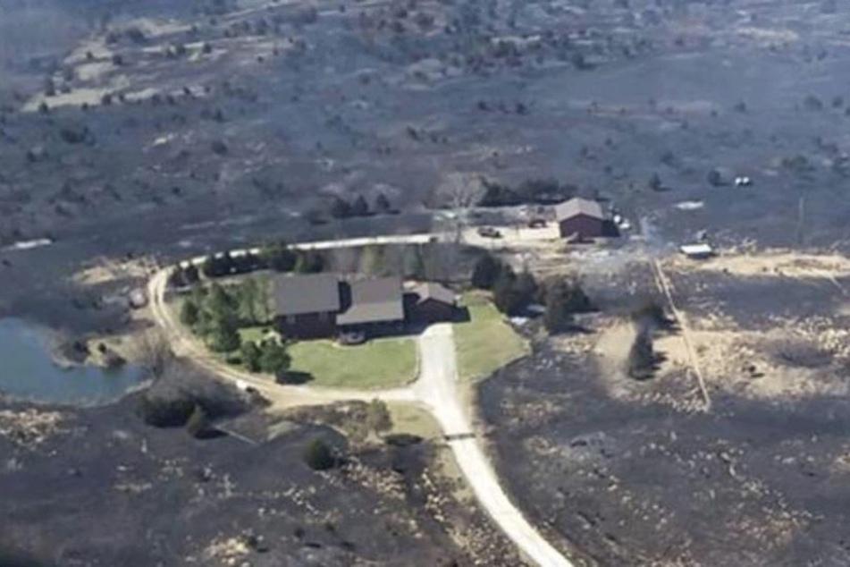 Alles im Umkreis dieses Grundstücks ist verbrannt und verkohlt..